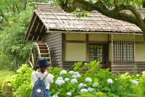 郷土の森・水車小屋