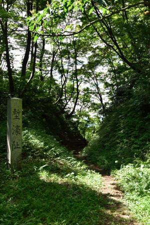 春日山城・空堀
