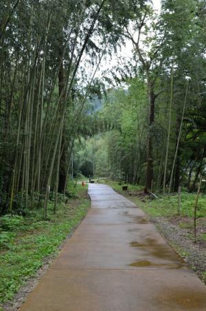 高山社跡・遊歩道