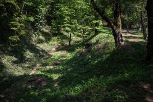 滝山城・二の丸側面の空堀