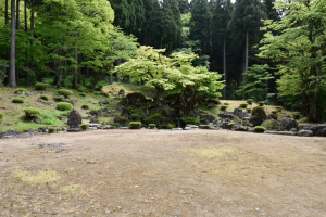 一乗谷朝倉氏・諏訪館跡庭園