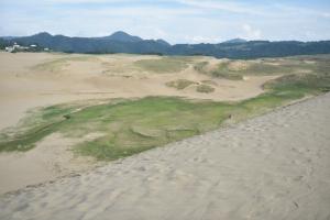 鳥取砂丘・緑地