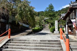 長谷寺・入り口