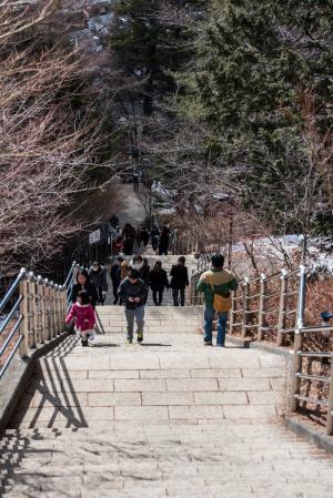 新倉山浅間公園・階段