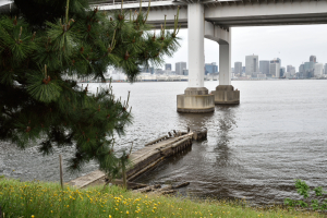 品川台場・桟橋