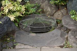 泉岳寺・首洗い井戸