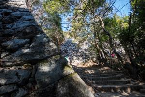 岩国城・出丸の石垣