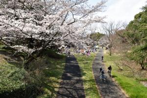 昭和記念公園・サイクリングコース
