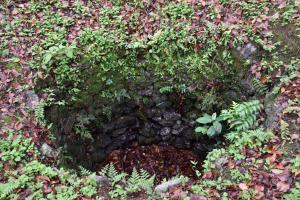 名護屋城・三ノ丸の井戸