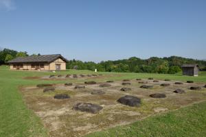 鞠智城・兵舎付近の礎石跡