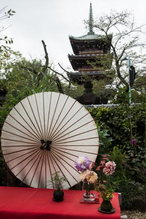 上野東照宮ぼたん苑・五重塔
