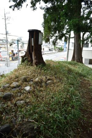 日枝神社・古墳