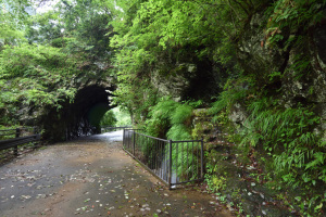 数馬の切通し・白丸隧道
