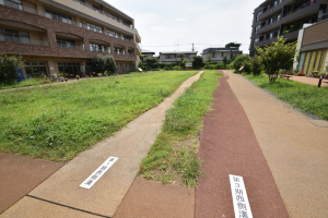 国分寺跡・東山道武蔵路