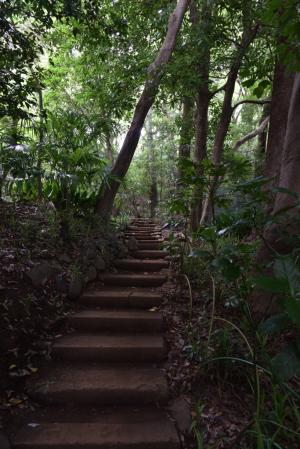 国分寺・万葉植物園