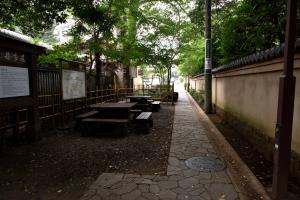 国分寺跡・お鷹の道