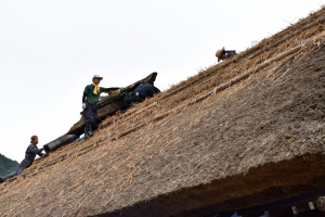大内宿・屋根の葺替