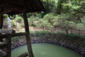 唐沢山城・大炊の井