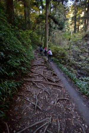高尾山・びわ滝コース