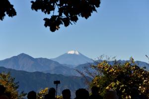 高尾山・山頂から富士山