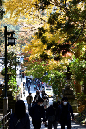 高尾山・1号路