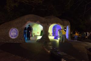 昭和記念公園ライトアップ・ワクワク広場
