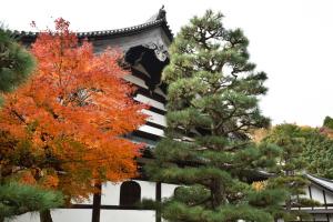東福寺・禅堂