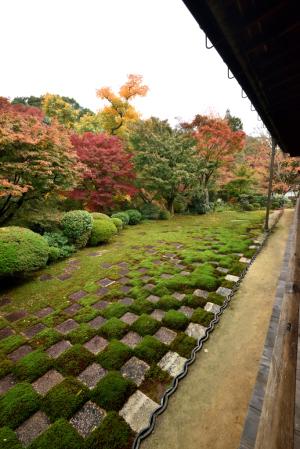 東福寺・方丈・北庭