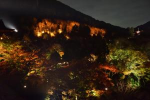 清水寺ライトアップ・轟門からの眺め