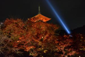 清水寺ライトアップ・三重塔