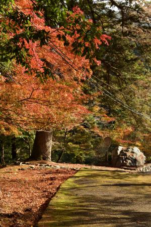 神護寺・硯石