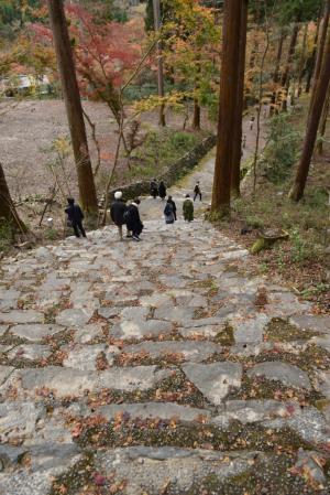 高山寺・金堂道