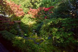 桂春院・思惟の庭