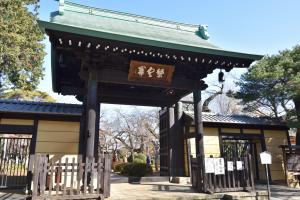 豪徳寺・山門